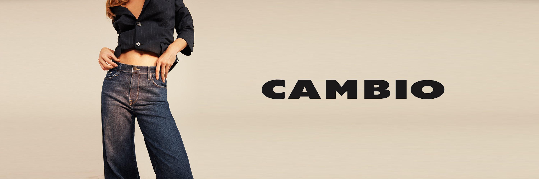 CAMBIO-B3